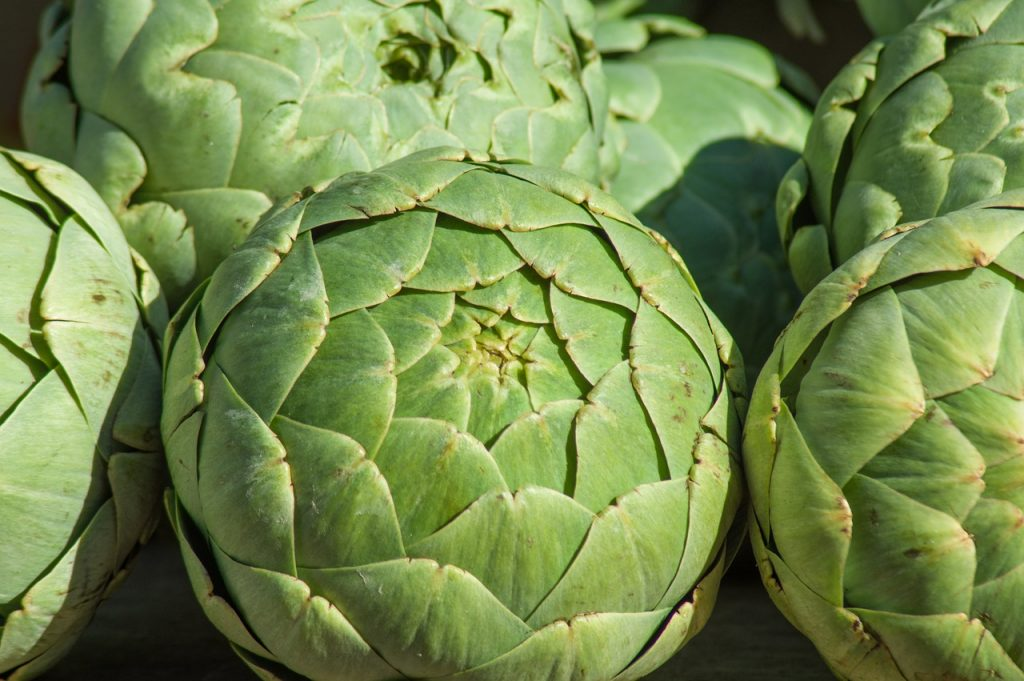 Artichoke : The Ultimate Guide 5