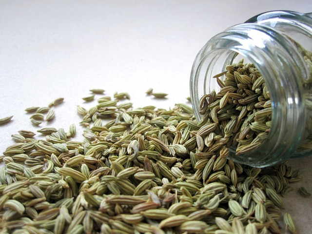 fennel in a jar