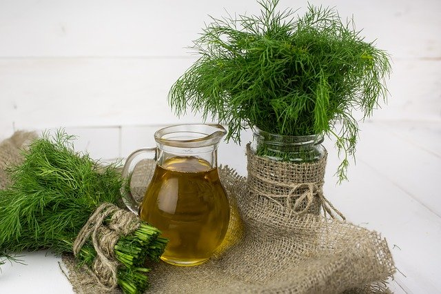 A pitcher with dill oil next to harvest dill herb